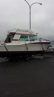 new Bayliner